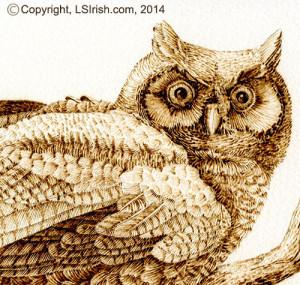 Wood burned owl of watercolor paper